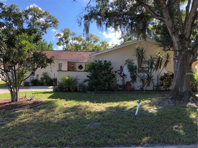 909 Peninsula Road, Tarpon Springs, FL 34689 (MLS #W7805941) :: McConnell and Associates