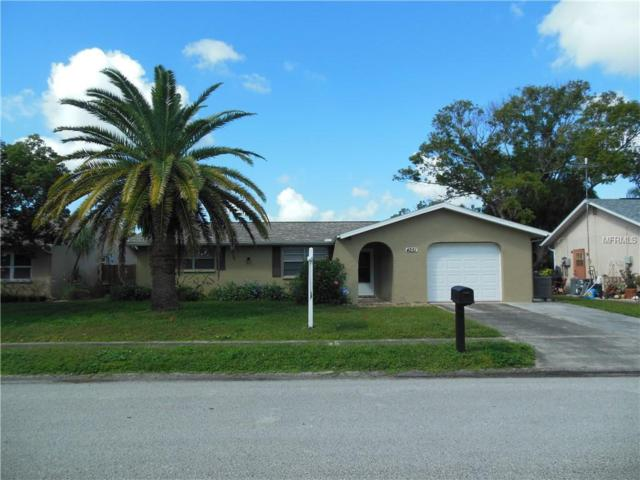 4251 Chipmunk Drive, New Port Richey, FL 34653 (MLS #W7806015) :: Team Virgadamo
