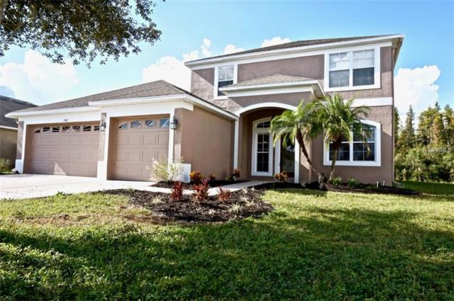 3349 Chessington Drive, Land O Lakes, FL 34638 (MLS #W7806017) :: Team Virgadamo