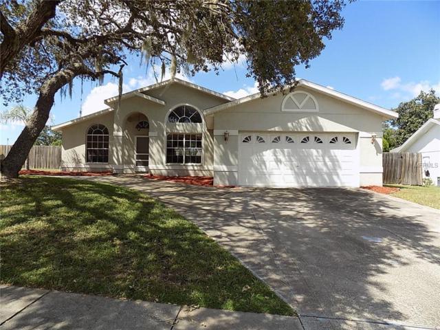 18639 White Pine Circle, Hudson, FL 34667 (MLS #W7806019) :: Team Virgadamo