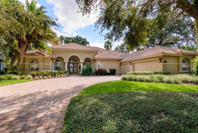 10554 Pontofino Circle, Trinity, FL 34655 (MLS #W7806072) :: The Duncan Duo Team