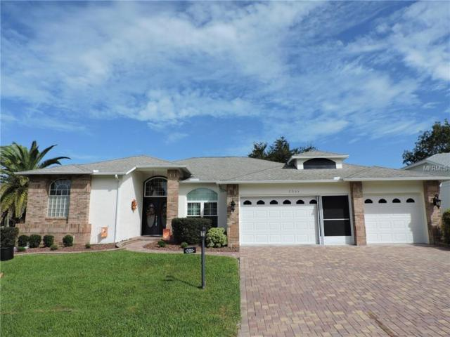 2055 Terrace View Lane, Spring Hill, FL 34606 (MLS #W7806142) :: The Duncan Duo Team