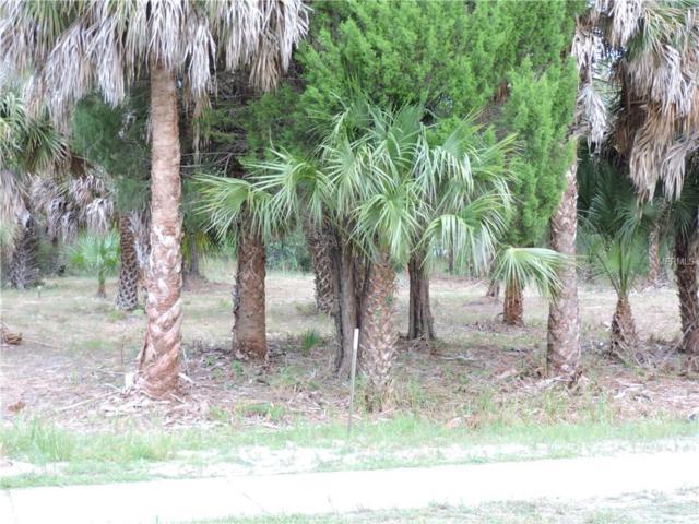 3175 Shoal Line Boulevard, Hernando Beach, FL 34607 (MLS #W7806268) :: Baird Realty Group