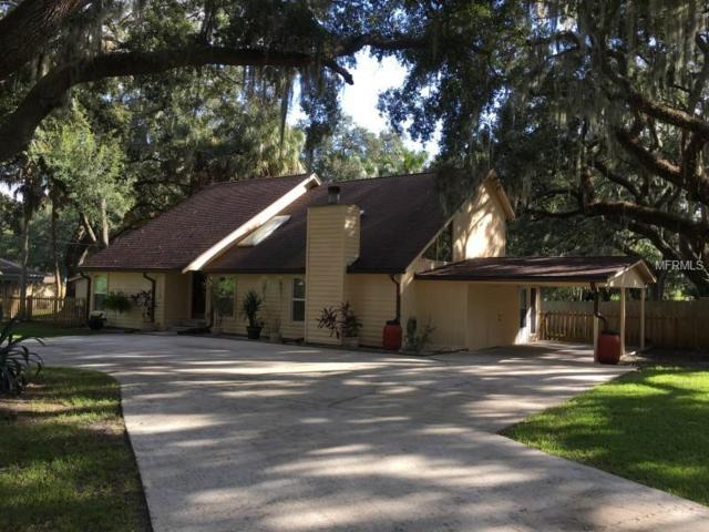 8202 Rancheria Drive, Riverview, FL 33578 (MLS #W7806392) :: Medway Realty