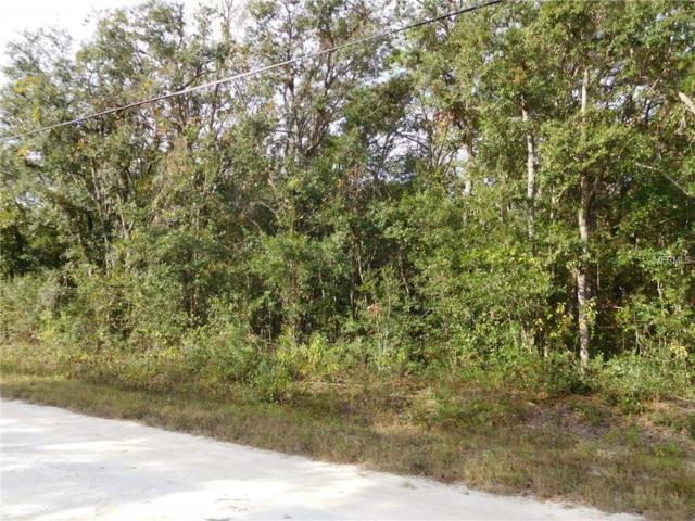 14381 Ermine Owl Road, Weeki Wachee, FL 34614 (MLS #W7806449) :: GO Realty