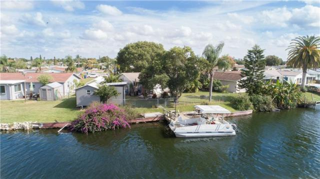 2413 Hama Drive, Holiday, FL 34691 (MLS #W7806489) :: Premium Properties Real Estate Services