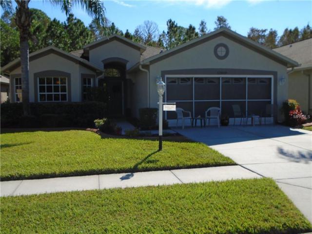 12050 Yellow Finch Lane, Trinity, FL 34655 (MLS #W7806562) :: RE/MAX CHAMPIONS