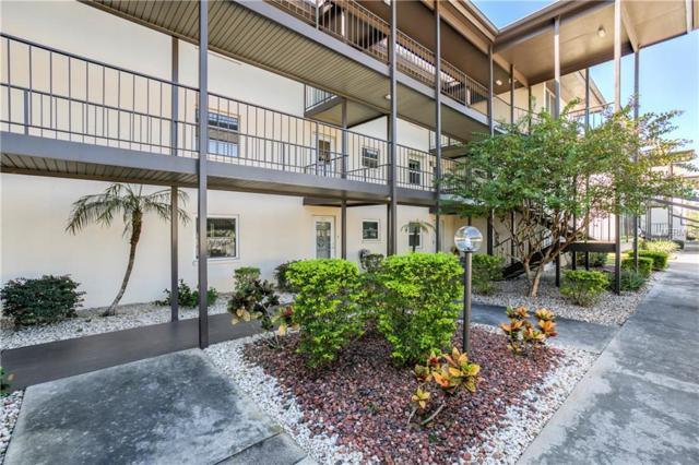 4518 Garnet Drive #202, New Port Richey, FL 34652 (MLS #W7806588) :: RealTeam Realty