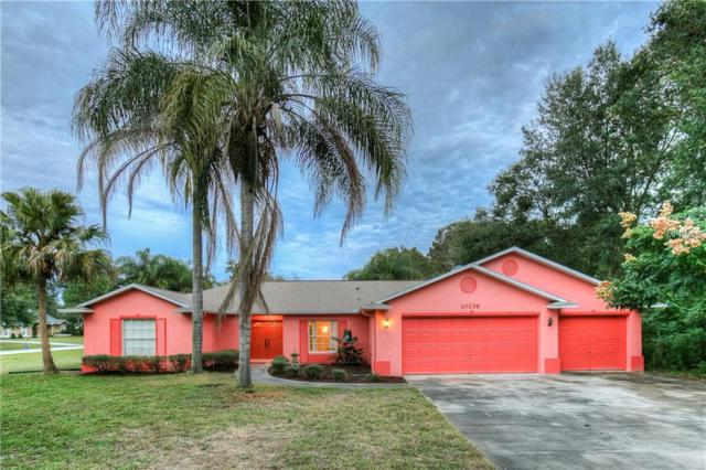 10136 Indian Mound Drive, New Port Richey, FL 34654 (MLS #W7806656) :: Premium Properties Real Estate Services