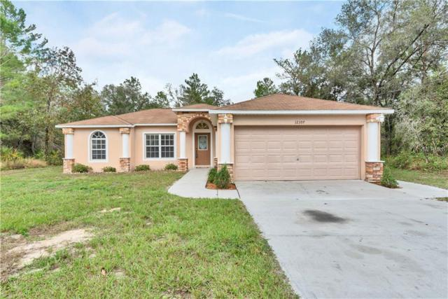 12397 Papercraft Avenue, Weeki Wachee, FL 34614 (MLS #W7806727) :: Delgado Home Team at Keller Williams