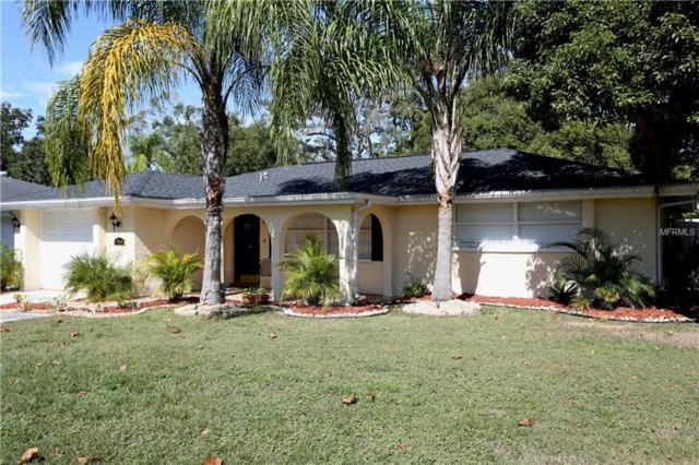 7245 Magnolia Valley Drive, New Port Richey, FL 34653 (MLS #W7806803) :: Mark and Joni Coulter | Better Homes and Gardens