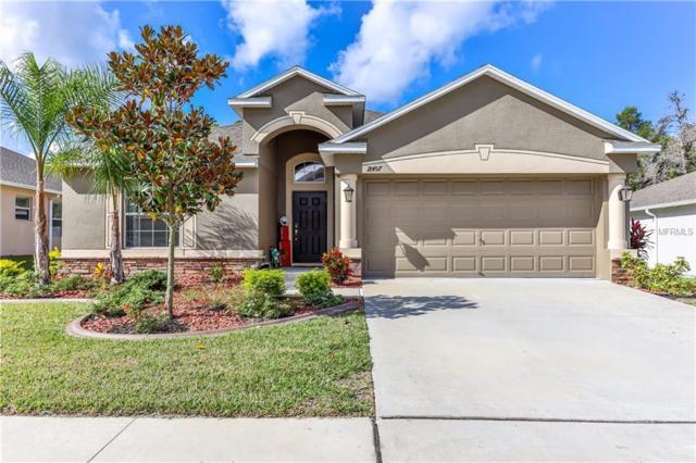 18457 Waydale Loop, Hudson, FL 34667 (MLS #W7806869) :: Team Bohannon Keller Williams, Tampa Properties