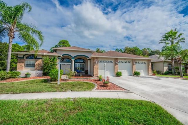 11311 Wedgemere Drive, Trinity, FL 34655 (MLS #W7806875) :: Delgado Home Team at Keller Williams