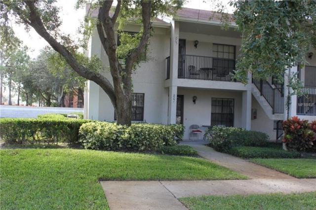 2163 Elm Street #801, Dunedin, FL 34698 (MLS #W7806893) :: Burwell Real Estate