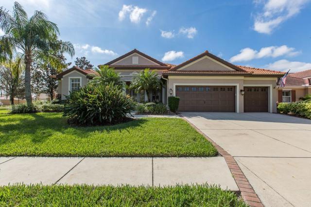 1325 El Pardo Drive, Trinity, FL 34655 (MLS #W7806911) :: The Duncan Duo Team