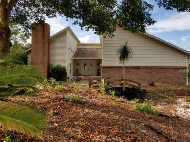 13123 Fish Cove Drive, Spring Hill, FL 34609 (MLS #W7806931) :: Baird Realty Group