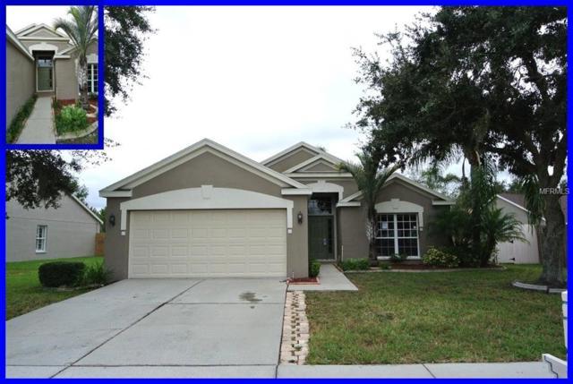 29734 Morningmist Drive, Wesley Chapel, FL 33543 (MLS #W7806935) :: The Duncan Duo Team