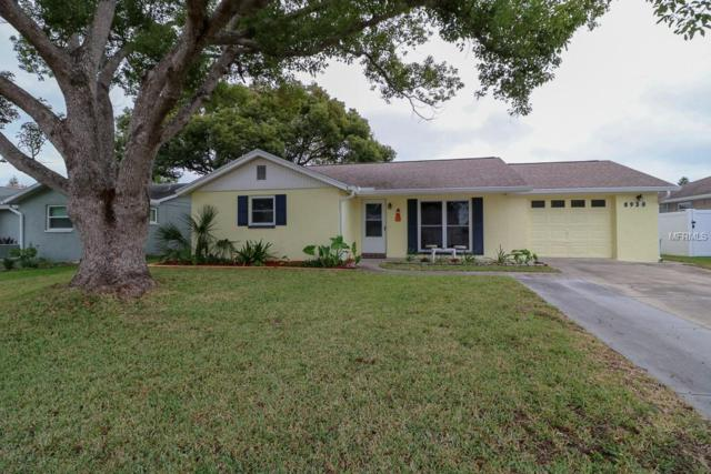 8930 Catalina Drive, Port Richey, FL 34668 (MLS #W7806942) :: Your Florida House Team
