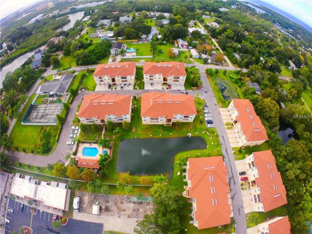 6420 Banyan Boulevard #302, New Port Richey, FL 34652 (MLS #W7806943) :: Jeff Borham & Associates at Keller Williams Realty