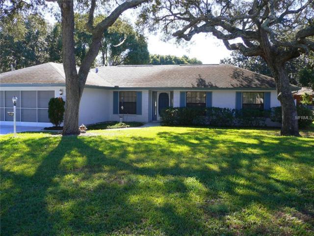 8420 Peoria Street, Spring Hill, FL 34608 (MLS #W7806985) :: Burwell Real Estate