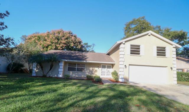 8703 Arrowhead Drive, Hudson, FL 34667 (MLS #W7807006) :: Jeff Borham & Associates at Keller Williams Realty