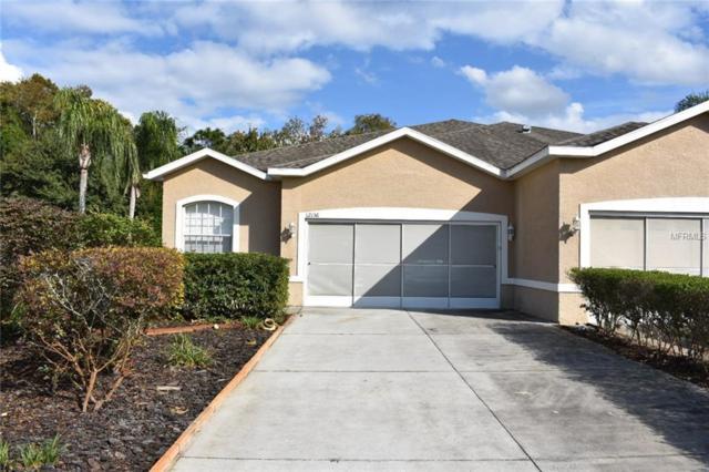 12136 Tournament View Avenue, New Port Richey, FL 34654 (MLS #W7807040) :: Jeff Borham & Associates at Keller Williams Realty