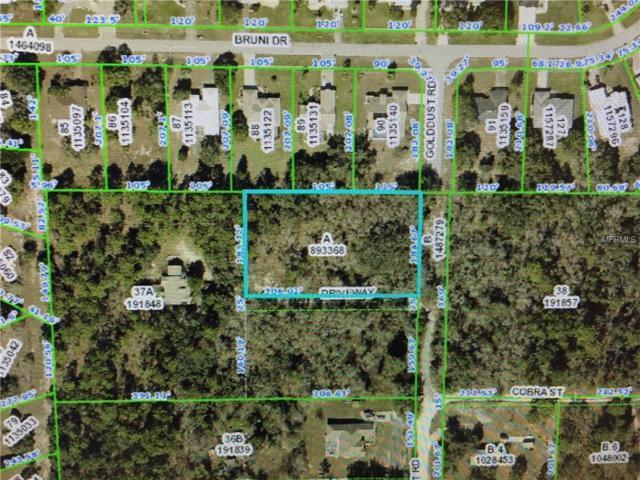 Golddust Road, Spring Hill, FL 34609 (MLS #W7807055) :: The Duncan Duo Team