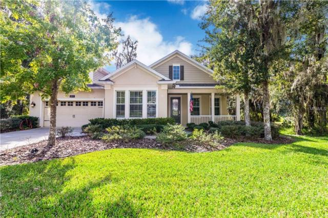 4623 Southern Valley Loop, Brooksville, FL 34601 (MLS #W7807152) :: Griffin Group