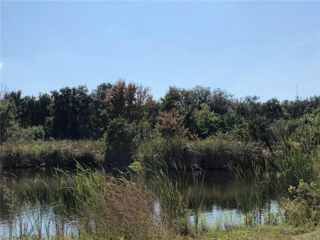 Congress, Port Richey, FL 34668 (MLS #W7807159) :: GO Realty