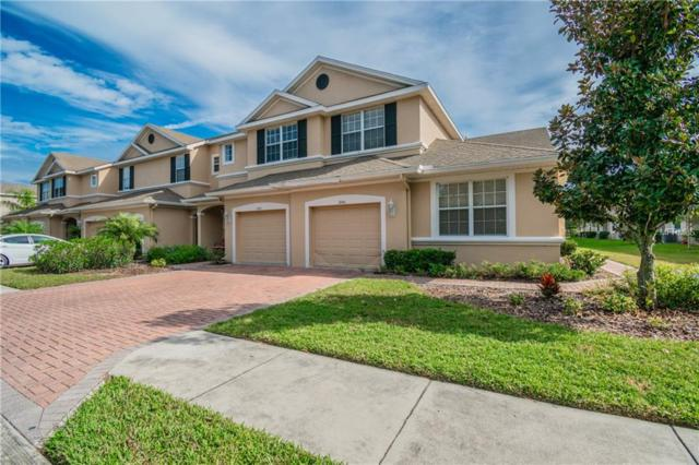 3846 Claybrook Drive, Wesley Chapel, FL 33544 (MLS #W7807222) :: Team Bohannon Keller Williams, Tampa Properties