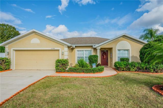 23745 Peace Pipe Court, Lutz, FL 33559 (MLS #W7807226) :: RE/MAX CHAMPIONS