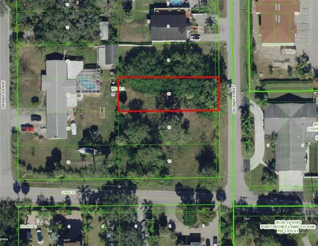 6313 Oelsner Street, New Port Richey, FL 34652 (MLS #W7807238) :: The Duncan Duo Team