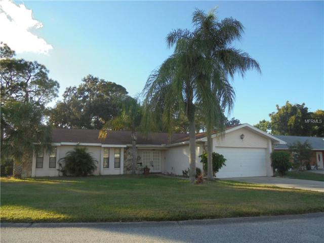 4672 Dewey Drive, New Port Richey, FL 34652 (MLS #W7807239) :: Remax Alliance