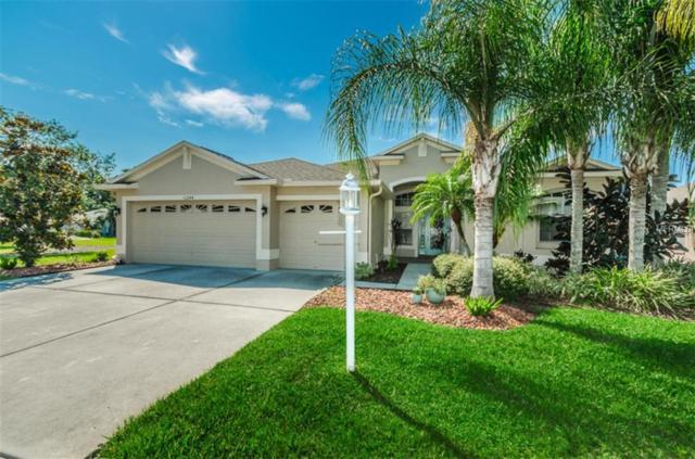 11244 Wedgemere Drive, Trinity, FL 34655 (MLS #W7807338) :: Team Virgadamo