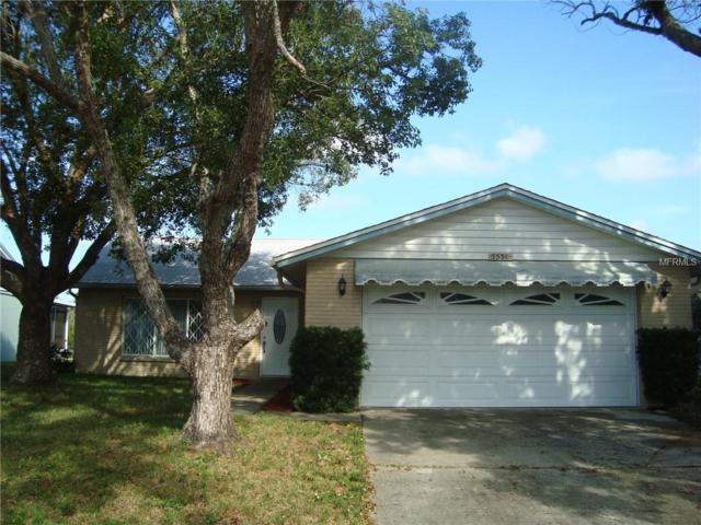 7531 Humboldt Avenue, New Port Richey, FL 34655 (MLS #W7807380) :: Griffin Group
