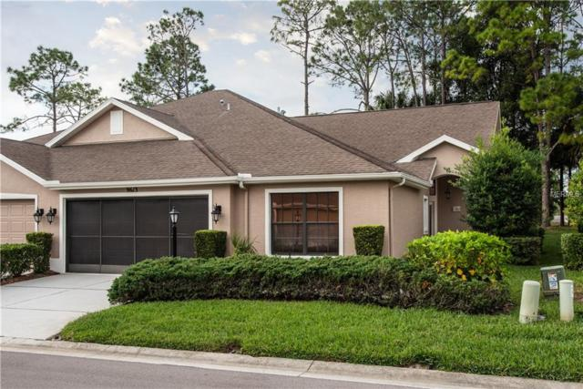 9613 Brookdale Drive, New Port Richey, FL 34655 (MLS #W7807445) :: The Duncan Duo Team