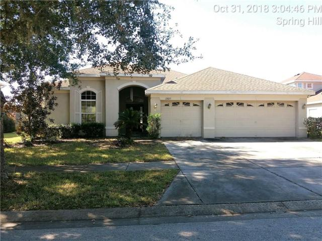 Address Not Published, Spring Hill, FL 34610 (MLS #W7807522) :: Mark and Joni Coulter | Better Homes and Gardens
