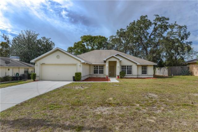 10483 Horizon Drive, Spring Hill, FL 34608 (MLS #W7807530) :: The Duncan Duo Team