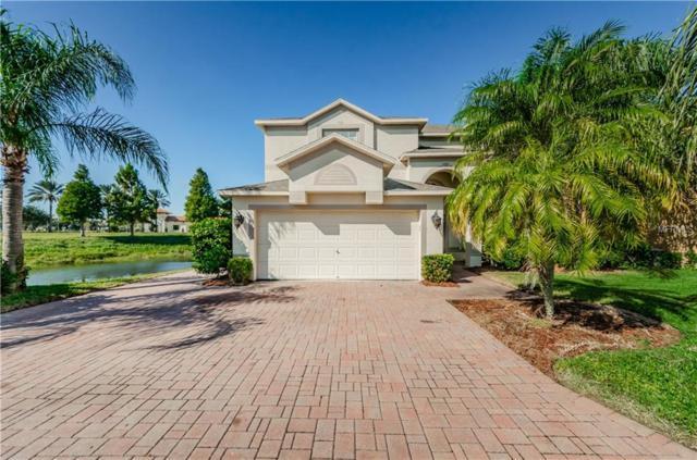 1329 Gallberry Court, Trinity, FL 34655 (MLS #W7807541) :: Team Virgadamo