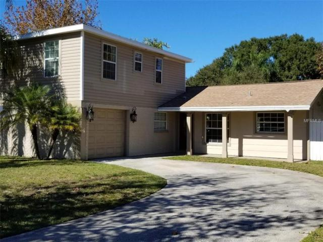 1418 Castleworks Lane, Tarpon Springs, FL 34689 (MLS #W7807543) :: Team Virgadamo