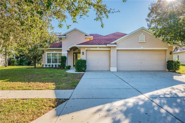 16718 Crested Angus Lane, Spring Hill, FL 34610 (MLS #W7807551) :: RE/MAX CHAMPIONS