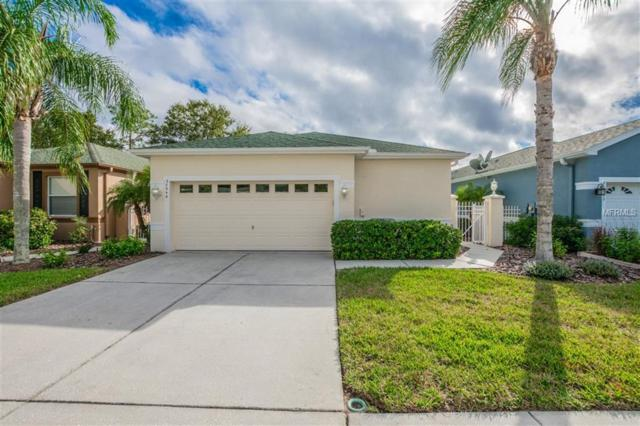 20946 Tangor Road, Land O Lakes, FL 34637 (MLS #W7807555) :: Griffin Group