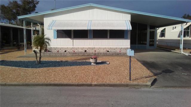 7317 Osage Drive, Hudson, FL 34667 (MLS #W7807589) :: Team Pepka