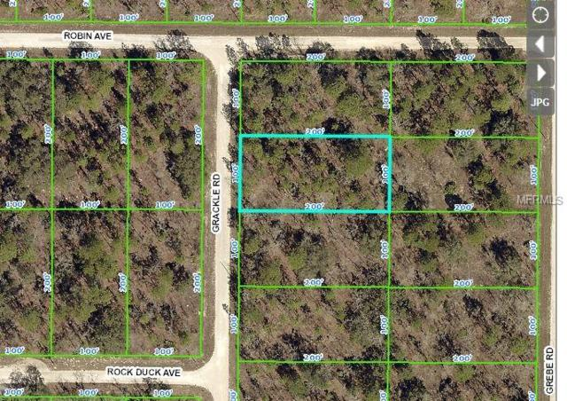 0 Grackle Road, Brooksville, FL 34614 (MLS #W7807593) :: Team Pepka