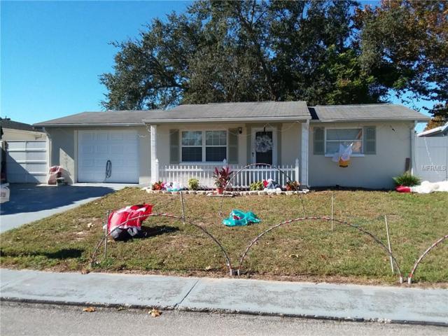 9135 Chantilly Lane, Port Richey, FL 34668 (MLS #W7807594) :: Team Suzy Kolaz