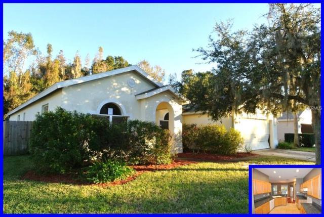 29415 Allegro Drive, Wesley Chapel, FL 33543 (MLS #W7807614) :: Cartwright Realty