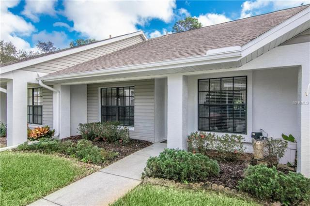 10512 Millriver Drive, New Port Richey, FL 34654 (MLS #W7807628) :: The Duncan Duo Team