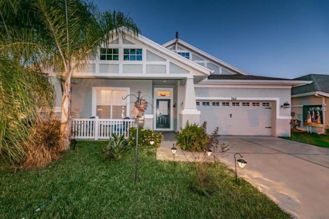 7816 Grasmere Drive, Land O Lakes, FL 34637 (MLS #W7807662) :: Baird Realty Group