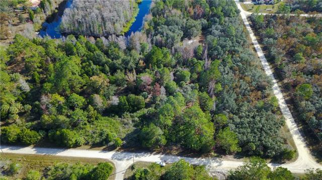 18264 Ramsey Road, Weeki Wachee, FL 34614 (MLS #W7807714) :: Mark and Joni Coulter | Better Homes and Gardens