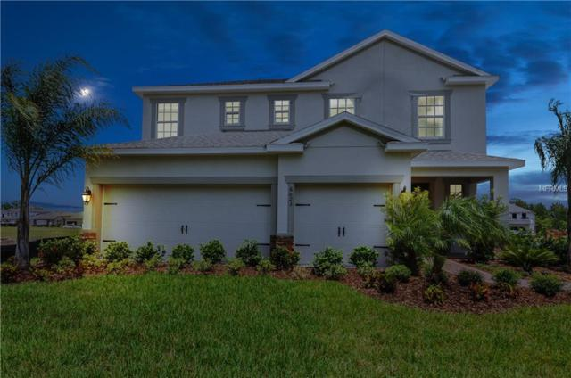 4316 Creek Bank Drive, Kissimmee, FL 34744 (MLS #W7807726) :: Griffin Group